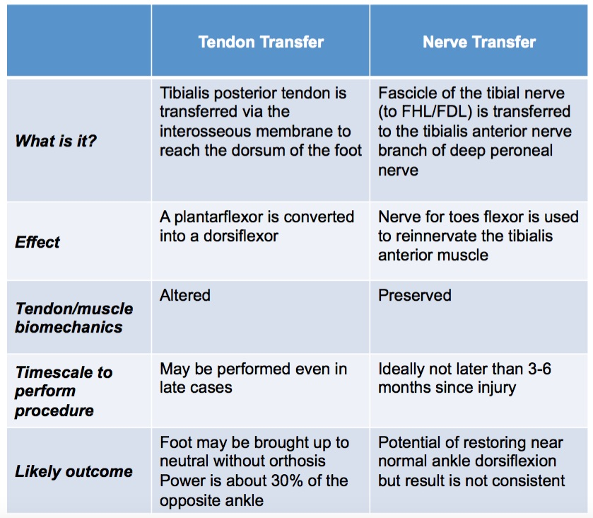 Common peroneal nerve palsy